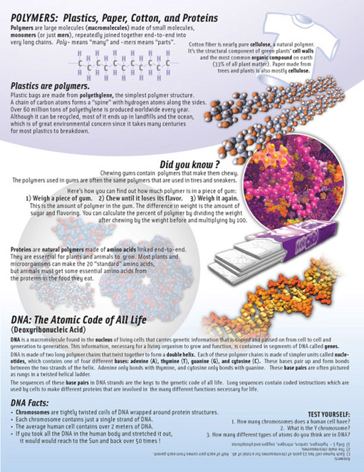 Educator's guide page explaining polymers and DNA